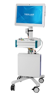 Medical cart computer with Teguar on the display panel