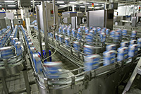 Production line of a dairy factory