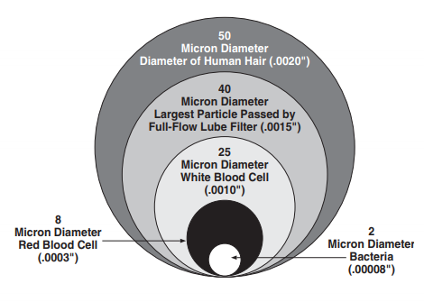 Diagram showing the relative sizes of small objects in microns